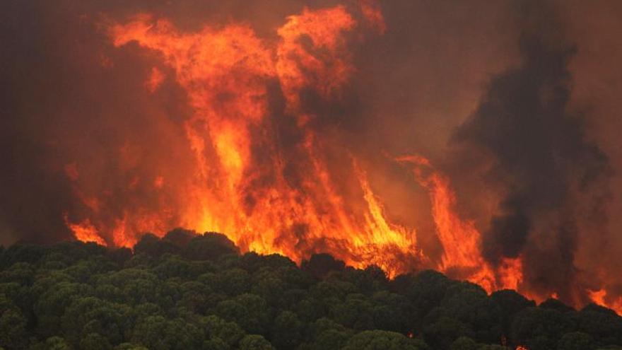 Activado nivel 1 de Emergencias por incendio declarado en Nerva (Huelva)