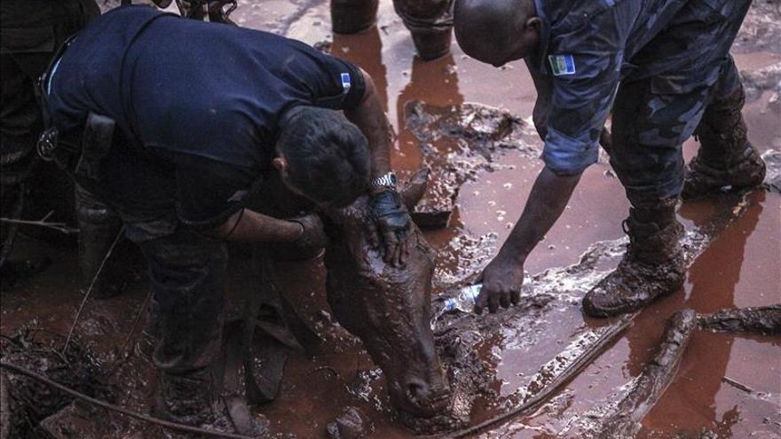 Prosigue la búsqueda de los desaparecidos por la riada de lodo en Brasil