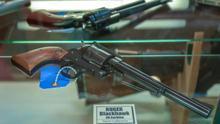 Condado Lake, primer santuario en Florida al derecho a portar armas en EE.UU.