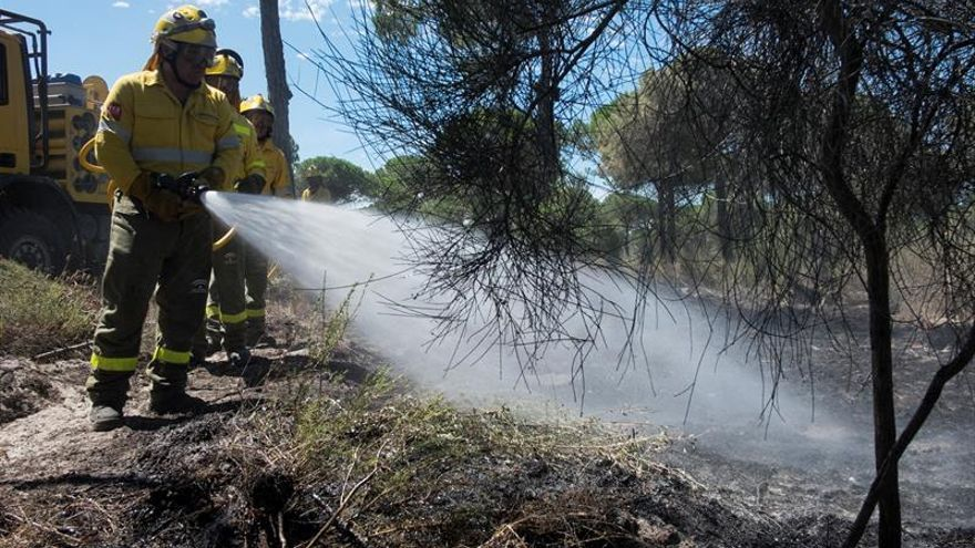 Ecologistas piden una restauración modélica tras el incendio de Doñana