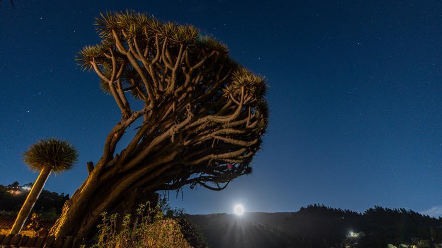 Imagen del Día de la Tierra' este viernes.
