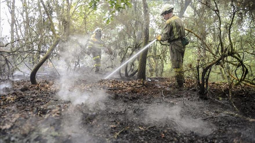 Permanece activo un incendio en Nogueira de Ramuín, que quemó ya 40 hectáreas