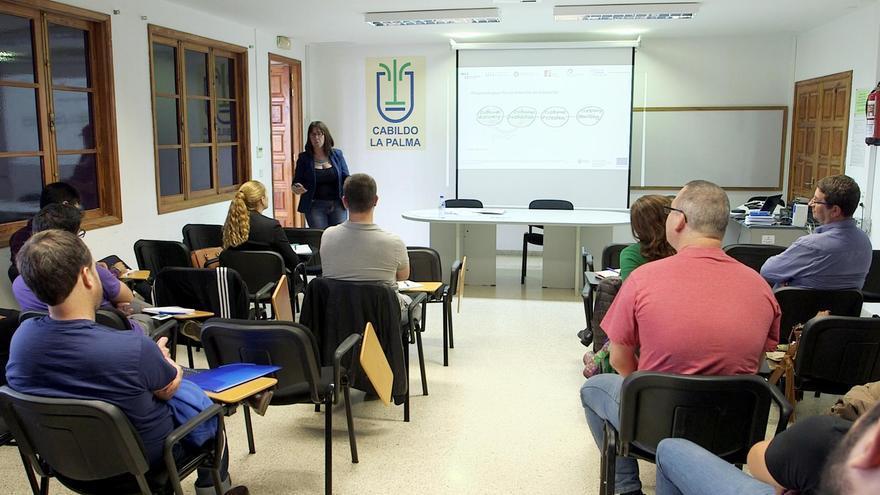 El primer curso celebrado en la Isla de formación en 'Gestión de la Innovación' se desarrolló en la Casa Rosada de Santa Cruz de La Palma.