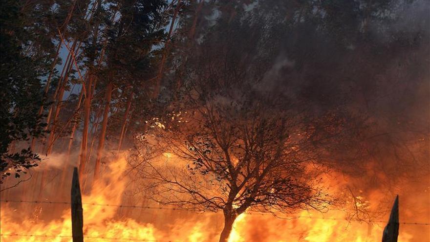 Las investigaciones apuntan a quemas imprudentes como principal causa de los fuegos