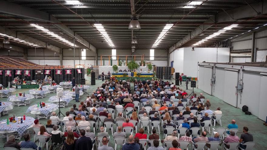 Acto celebrado en Gáldar, isla de Gran Canaria, este viernes, con asistencia de plataneros