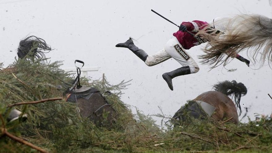 Grand National Steeplechase / Tom Jenkins, UK, The Guardian