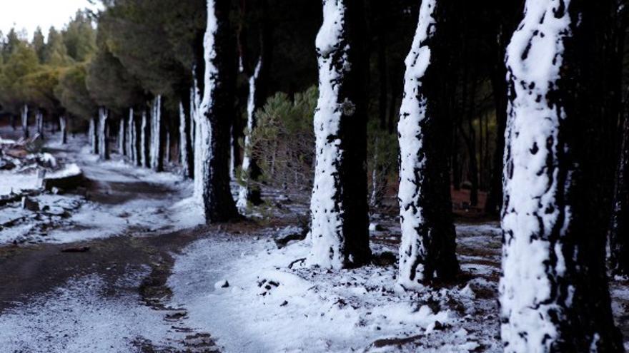 De la nieve en Gran Canaria (II) #3