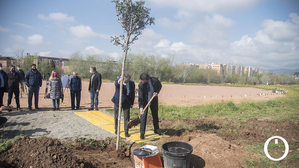 Plantación de árboles en el futuro Parque de Levante.