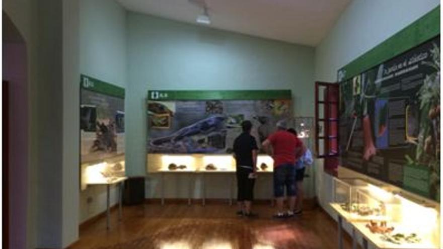 En el Centro de Visitantes de Los Tilos se ha renovado su contenido expositivo.