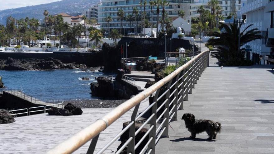 La céntrica calle San Telmo, de Puerto de la Cruz (Tenerife), abarrotada normalmente de turistas desierta el pasado lunes por el estado de alarma.