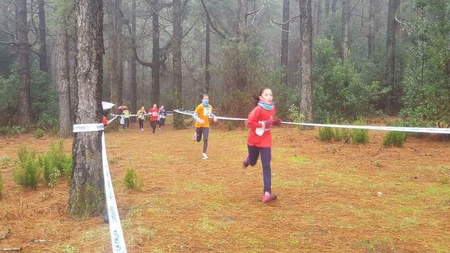 Imagen de archivo de participantes en una carrera de campo a través.