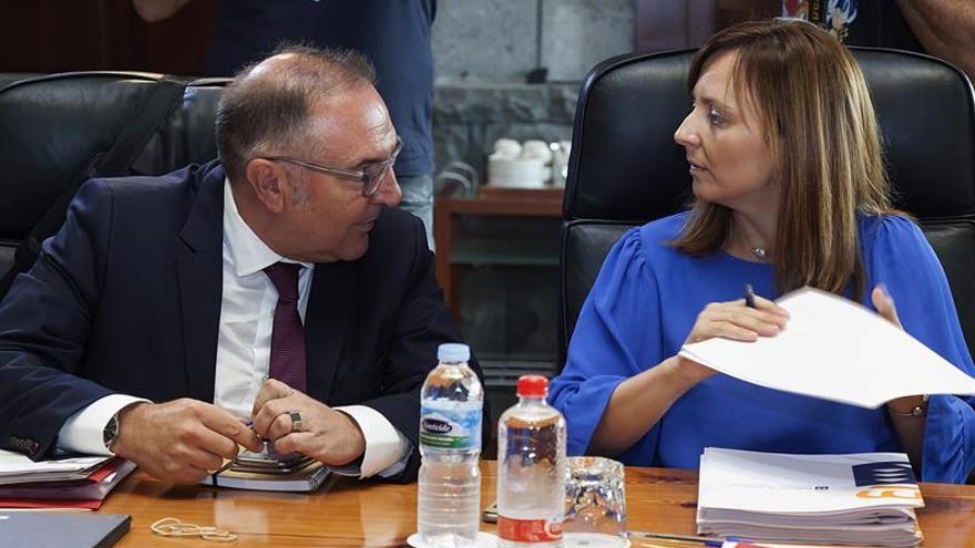 El consejero de Sanidad, José Manuel Baltar (i) y la consejera de Política Territorial, Sostenibilidad y Seguridad del Gobierno de Canarias, Nieves Lady Barreto.