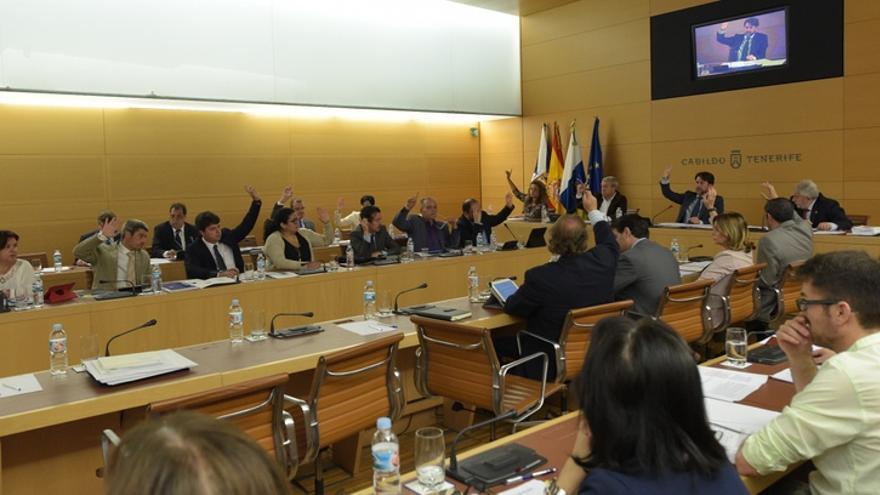 Un momento de la sesión plenaria de este viernes / Cabildo de Tenerife
