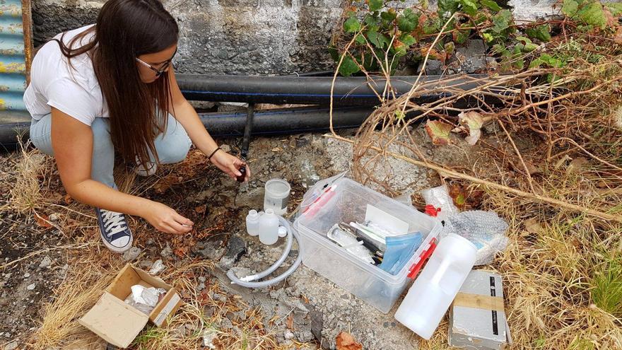 Una técnico del Instituto Volcanológico de Canarias toma muestras de agua. Foto: INVOLCAN