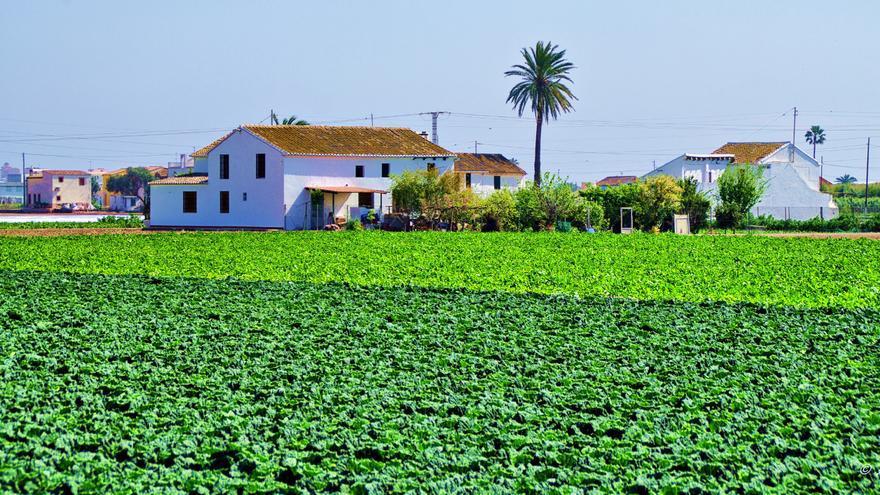 Circuito Horta Nord : El futuro de l horta