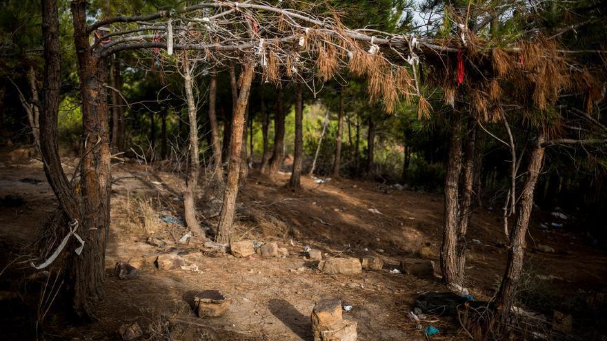 Campamento de migrantes en los bosques del norte de Marruecos tras ser desmantelado