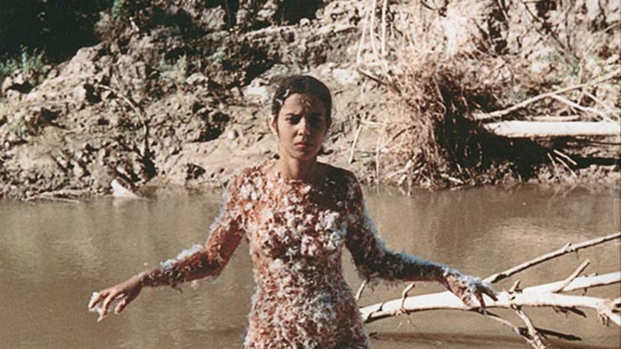 Ana Mendieta: Untitled (Blood and Feathers), 1974 | Galerie Lelong, New York