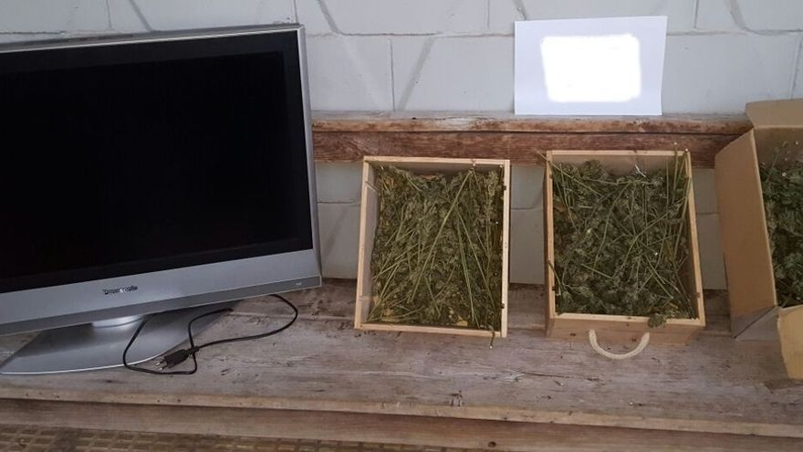 Tres detenidos por robo con fuerza, allanamiento y cultivo de marihuana en una vivienda de Burguete