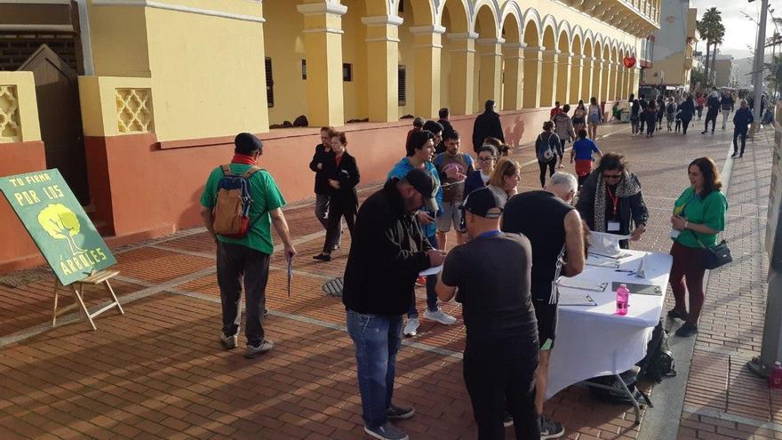 Recogida de firmas en el Paseo de Las Canteras, en la capital grancanaria.
