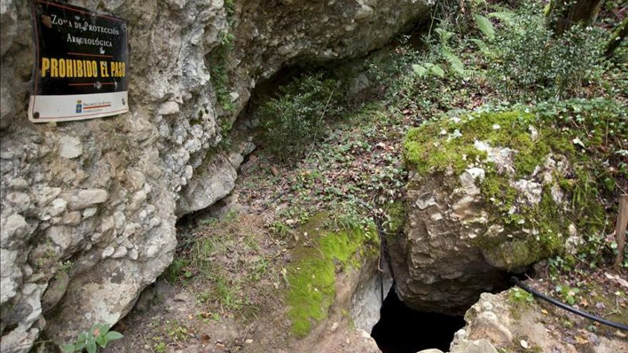 Las comunidades neandertales dividían algunas de sus tareas por sexos