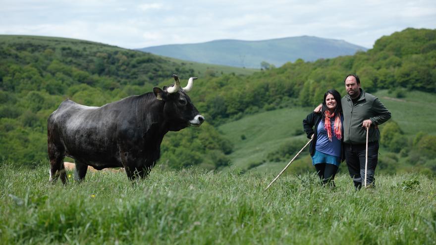 María Montesino y Lucio González forman parte de la cooperativa de ganadería ecológica Siete Valles de Montaña
