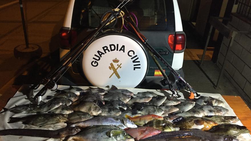 Parte de la pesca retirada a los supuestos infractores, en una foto de la Benemérita
