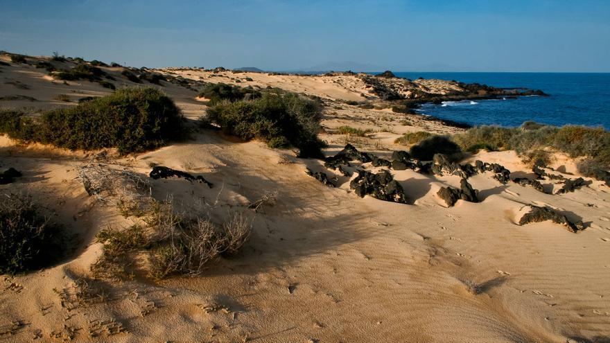 Costa del Parque Natural de las Dunas de Corralejo, en Fuerteventura. VIAJAR AHORA