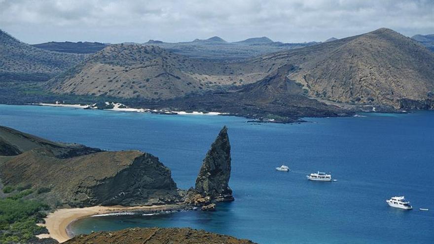 Ordenan prisión a 32 peruanos y un venezolano por pesca ilegal en Galápagos