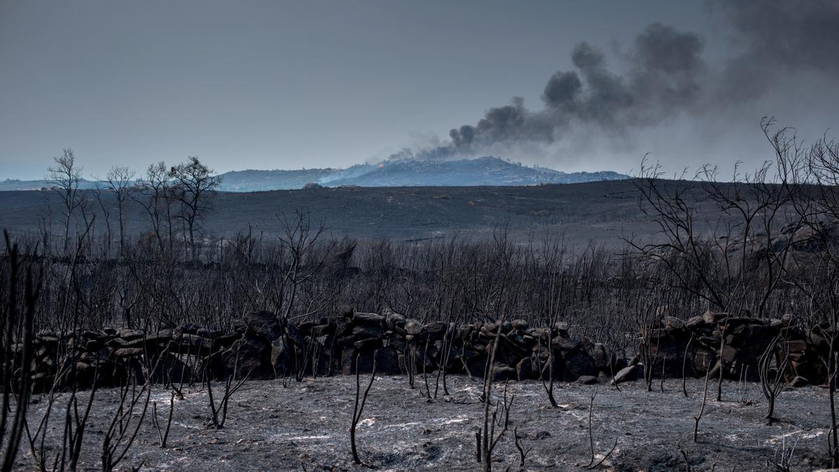 Zona de Cualedro (Ourense) afectada por un incendio forestal.