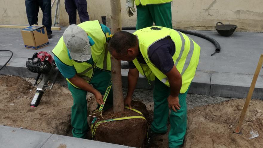 Los operarios instalan las correas de sujeción
