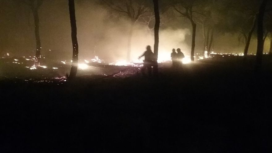 Desalojadas más de 300 personas por el incendio forestal de Moguer, contra el que se suma la UME