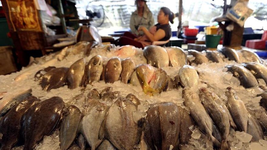Más de 100 detenidos en Tailandia por pesca ilegal y tráfico de personas