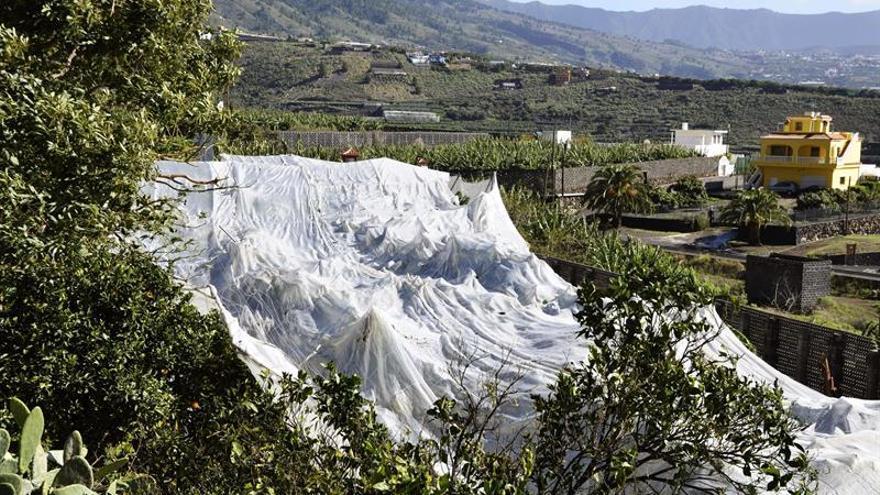 Vista de los destrozos causados por el viento en un invernadero en una finca del barrio tijarafero de Amagar. EFE/Miguel Calero