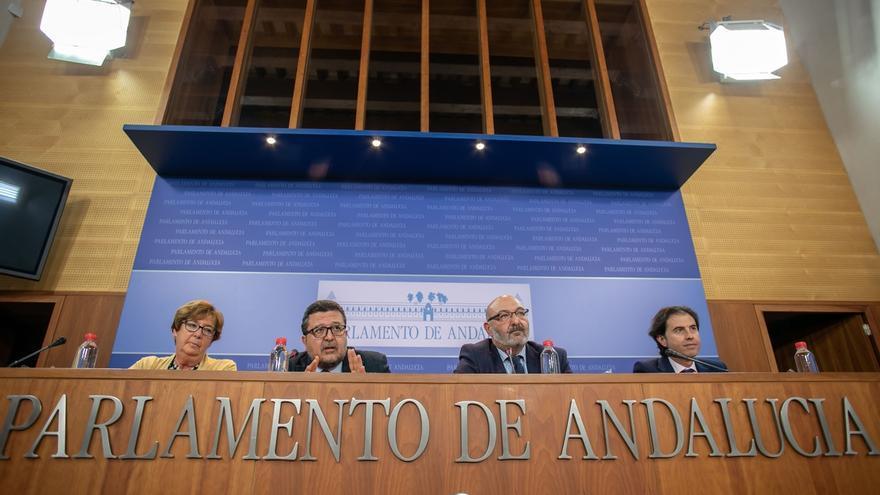 """Vox critica la """"teatralización y postureo"""" de PSOE-A y Adelante con la comisión de Cultura al no haberles llamado"""