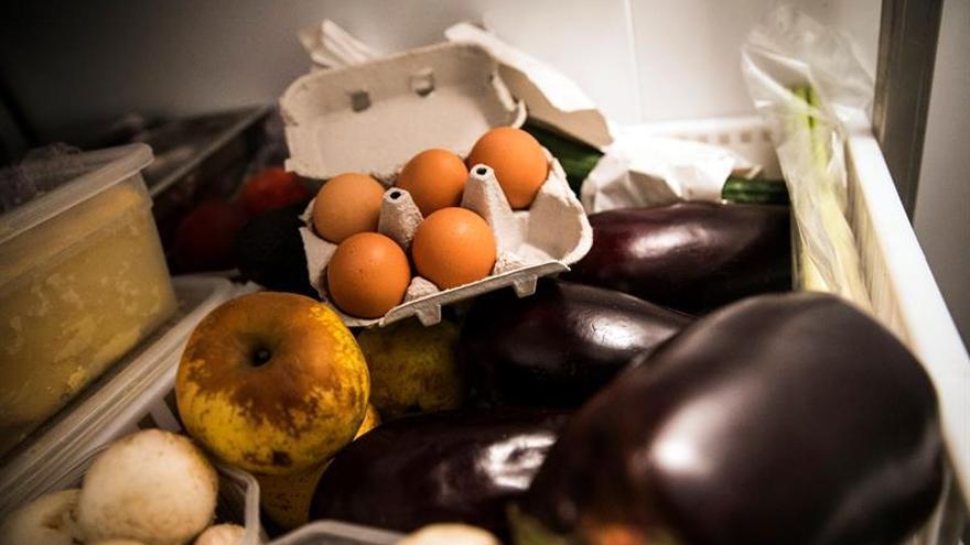 Inmovilizan en Bizkaia una partida de 20.000 huevos contaminados con fipronil