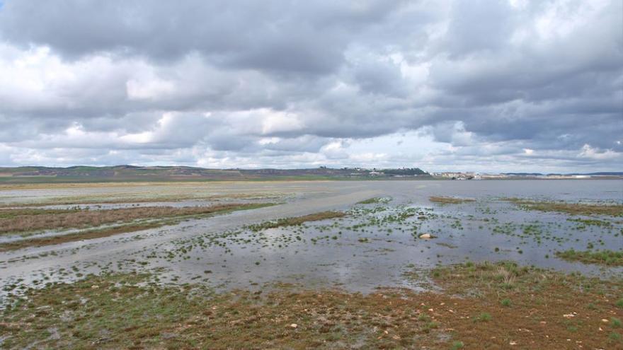 Laguna de El Hito, muy cerca de los terrenos elegidos para instalar el ATC