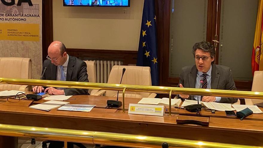 Fernando Miranda en la reunión por videoconferencia