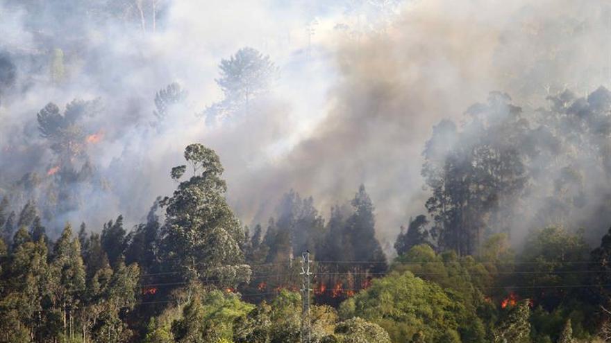 La oleada de incendios en Asturias cumple su quinto día con 39 fuegos activos
