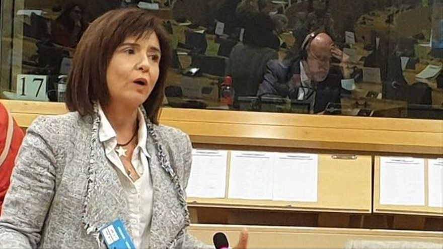 Silvia Oñate, en la comisión de Peticiones del Parlamento Europeo, el 12 de noviembre.