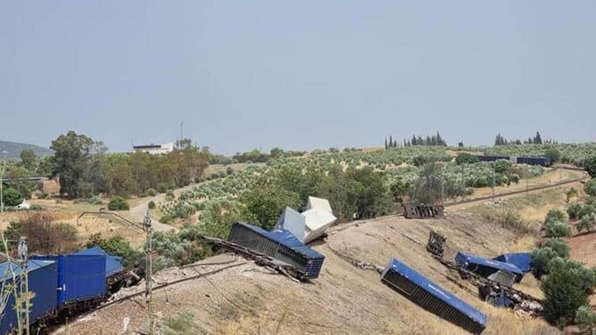Vagones del tren de mercancías volcados.