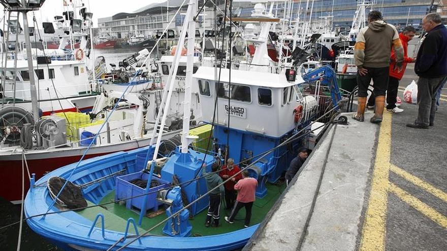 El Gobierno reparte la pesca de jurel entre la flota del Cantábrico noroeste