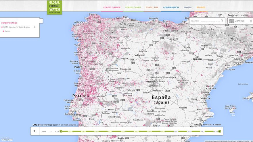 Global Forest Watch.