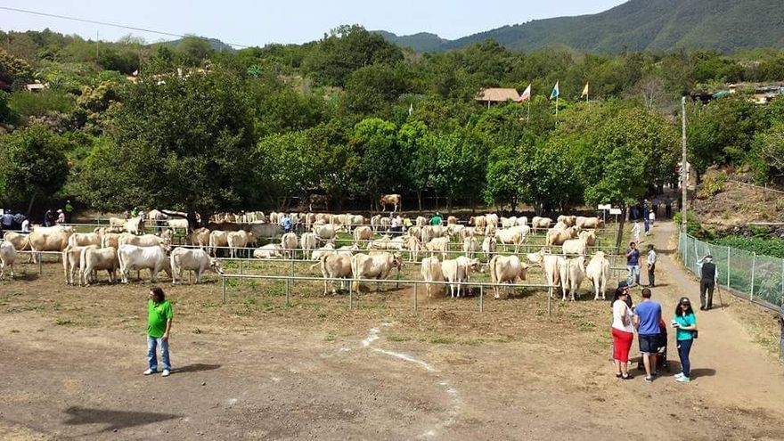 Imagen de archivo de la Feria de San Isidro.