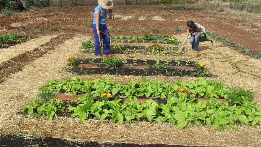 Agricultores trabajando la tierra.
