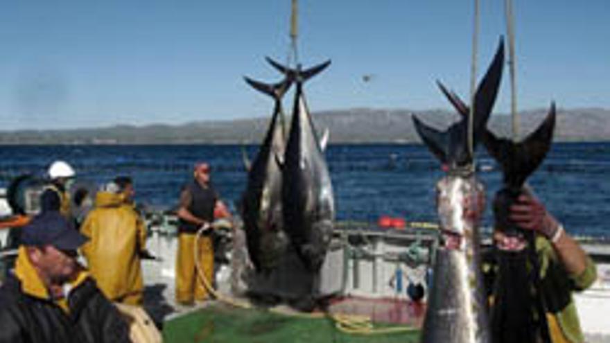 Imagen de un barco del Estrecho dedicado a la pesca del atún. EFE