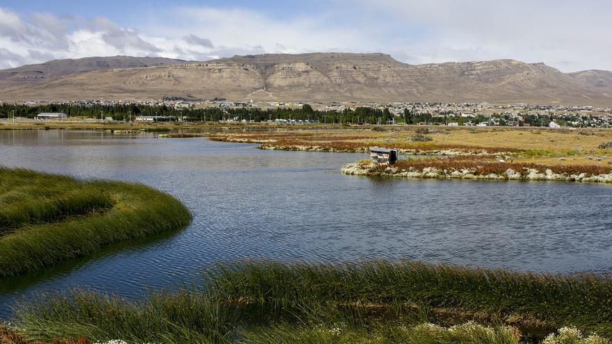 Marismas de la Laguna Nímez, un santuario para las aves en pleno El Calafate.
