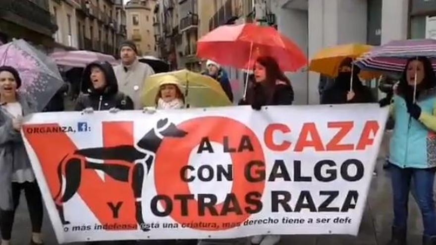 Manifestación en Toledo contra la caza con perros