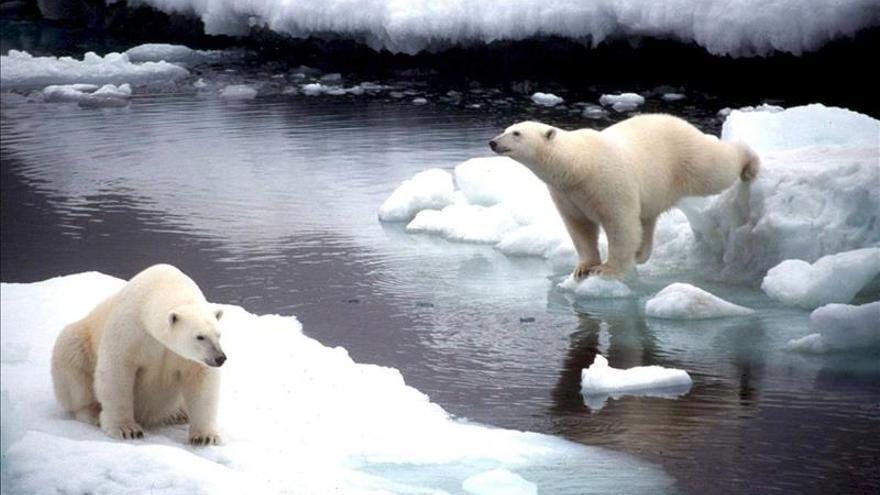 La extensión de la capa de hielo del Ártico es la menor desde finales de 1970