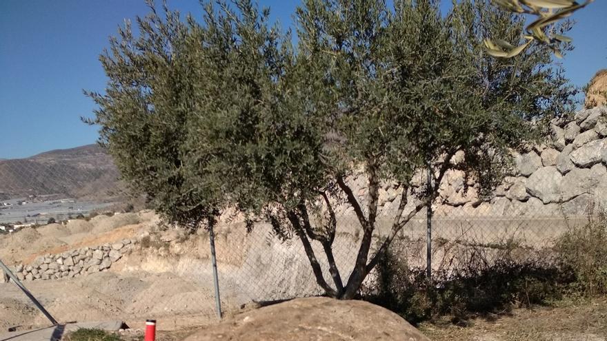 La Policía Autonómica recupera una contrapesa de almazara romana robada en junio de una finca en Berja