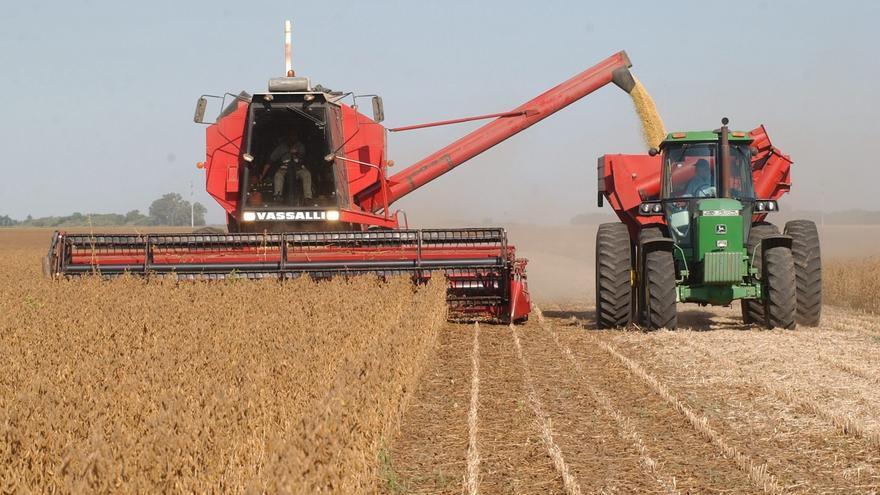 La próxima cosecha argentina de soja y maíz llegaría a un valor récord en divisas